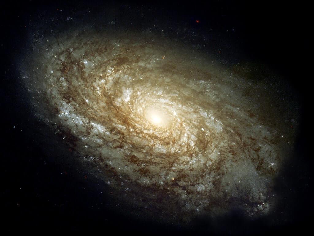 dusty spiral galaxy