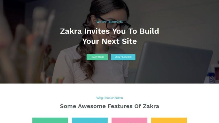 zakra free wordpress business theme